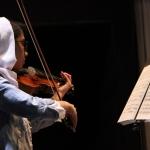 عسل ایروانی